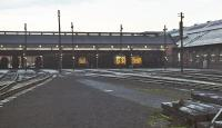 The front of Polmadie shed on an overcast March afternoon in 1971. The shed yard seems strangely deserted, although the yellow ends betray the presence of locomotives of classes 17, 24 and 50 inside, while the silhouettes on the left suggest further variety in the shape of classes 08 and 20.<br><br>[Bill Jamieson&nbsp;13/03/1971]