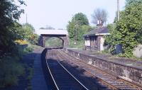 Platform view at Blackford Hill station looking east towards <br> Newington in the late spring of 1971, nearly 9 years after closure.<br><br>[Bill Jamieson&nbsp;//1971]