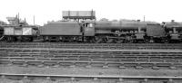 A notable visitor to Kingmoor on 5 July 1958. The much travelled Stanier 8F no 48773 was built by the North British Locomotive Co in 1940 for the War Department (works no 24607). It was originally intended to operate in France but was instead sent to Persia in 1941, becoming Persian State Railways no 41-109. During its time in Persia the locomotive sustained damage in a derailment following a collision with a camel. In 1944 it was converted to oil firing. Four years later it went to Suez where it was almost scrapped following major mechanical problems but eventually made its way back to Derby Works for attention during 1952. Following overhaul the locomotive emerged as WD no 500 and was sent to the Longmoor Military Railway. The 8F was taken into BR stock in 1957, becoming no 48773 and allocated to Polmadie shed. Withdrawal came in 1962, only to see it reinstated in November the following year at Kingmoor (some records show an intervening temporary reinstatment between February and July 1963 while still at Polmadie). After a number of further moves the locomotive's final BR port of call was Rose Grove, from where it was withdrawn by BR for the last time in August 1968, having hauled the MRTS/SVRS 'Farewell to Steam' special a few days earlier [see image 36292]. Today 48773 can be seen on display in the Engine House at Highley on the Severn Valley Railway. <br><br>[Robin Barbour Collection (Courtesy Bruce McCartney)&nbsp;05/07/1958]