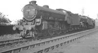 B1 4-6-0 no 61398 and colleagues in the sidings at Carlisle Canal shed in June 1962.<br><br>[K A Gray 07/06/1962]