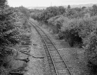 View west from the Beardmore Street bridge in September 1991. The track to the left was the western extent of the Arnott Young sidings, having been cut back from the Clyde Navigation Trust depot. The track to the right was the former westbound track of the main line, retained until the 1980s for the Chivas Regal Depot (closed early 1988) and the Dalnottar Oil Depot (end of line lifted by 1987). Dalmuir Riverside station was behind the camera. For a more recent view [see image 14856].<br><br>[Bill Roberton&nbsp;14/09/1991]