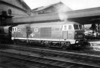 Hymek no D7010 stands alongside the mailbag trolleys at Bristol Temple Meads in 1961.<br><br>[John Thorn&nbsp;//1961]