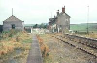 View over the level crossing towards the main station from the westbound platform at Sunilaws in 1968. The station on the Kelso - Tweedmouth route had been closed for approximately 13 years at this stage with the line itself having closed completely in 1965. [See image 36586].<br><br>[Bruce McCartney&nbsp;//1968]