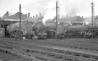 Locomotives ready for the road in Doncaster shed yard on 7 October 1962 include A4 60017 <I>Silver Fox</I>, B1 61256, and A4 60032 <I>Gannet</I>.<br><br>[K A Gray&nbsp;07/10/1962]
