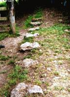 Near Calke Abbey in Derbyshire, two lines of stone setts mark the course of the Ticknall Tramroad; which was largely used to carry quarried stone to the nearest canal. [See image 36959]<br><br>[Ken Strachan&nbsp;/08/2010]