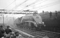 Gresley A4 Pacific no 60019 <I>Bittern</I> photographed at the west end of Guide Bridge station on 25 November 1967. The locomotive is in the process of running round the MRTS <I>'Mancunian'</I> railtour (aka <I>'Lancs & Yorks Rambler'</I>) which it had recently brought in from Leeds City. The A4 was preparing to take the train on the next leg of the tour to Stockport - running tender first.<br><br>[Robin Barbour Collection (Courtesy Bruce McCartney)&nbsp;25/11/1967]
