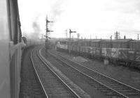 The RCTS (West Riding Branch) <I>Borders Rail Tour</I> from Leeds City stopped short of Petteril Bridge Junction, Carlisle, on 9 July 1961. Stanier Pacific 46247 <I>'City of Liverpool'</I> was relieved here by B1s 61242 + 61290 for the next leg of the journey to Hawick [see image 33252].<br><br>[K A Gray&nbsp;09/07/1961]