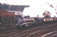A4 60022 <I>Mallard</I> at the head of the Gainsborough Model Railway Society 'Forth Bridge Special' returning to Lincoln, at the east end of Waverley station on Saturday 26th May 1962.<br><br>[Frank Spaven Collection (Courtesy David Spaven)&nbsp;26/05/2002]