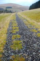 View north along the Talla Railway trackbed near Tweedsmuir on 26 December 2011. Amazingly not only has the trackbed's ballast survived here but the indentations from sleepers are still obvious, now grass-lined.<br><br>[Ewan Crawford&nbsp;26/12/2011]