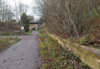 The heavily overgrown up platform of Ruthrieston Station, looking West along the old trackbed in December 2011. Ruthrieston closed to passengers in April 1937, along with several other stations in the Aberdeen suburbs including Holburn Street to the east and Pitfodels to the west [see separate images].<br><br>[Brian Taylor&nbsp;27/12/2011]