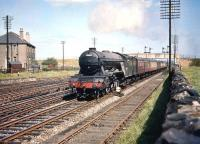 Haymarket A3 Pacific no 60089 <I>Felstead</I> speeds west through Saughton Junction on Thursday 1 August 1957 at the head of the Edinburgh Waverley - Glasgow Queen Street leg of the down <I>North Briton</I> ex Leeds City.<br><br>[A Snapper (Courtesy Bruce McCartney)&nbsp;01/08/1957]
