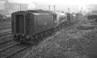 The corridor tender of 60004 <I>William Whitelaw</I> brings up the rear of a locomotive lineup at Heaton shed, thought to have been photographed around 1960. The A4 spent most of its BR years at Haymarket, but ended its days at Aberdeen's Ferryhill shed, from where it was finally withdrawn in July 1966.<br><br>[K A Gray&nbsp;//1960]