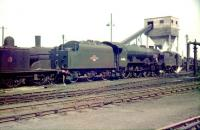 A busy scene in the yard at Polmadie on 16 May 1959. Standing in the centre of the picture is home based Royal Scot 4-6-0 no 46105 <I>Cameron Highlander</I>.<br><br>[A Snapper (Courtesy Bruce McCartney)&nbsp;16/05/1959]