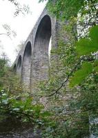 Looking up at Camps Viaduct on 10 October 2011. View is south east from the footpath on the west side of the River Almond.  [see image 35972]<br><br>[John Furnevel&nbsp;10/10/2011]