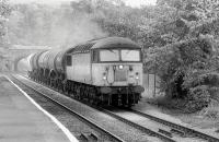 56103 nears Aberdour with a Thornton - Mossend freight in 1995, mainly comprising CO2 tanks from Cameron Bridge.<br><br>[Bill Roberton&nbsp;//1995]