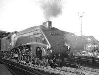 A locomotive that spent almost all of its operational life at Kings Cross shed until withdrawal in April 1963 was Gresley A4 no 60013 <I>'Dominion of New Zealand'</I>. The Pacific is seen here leaving Newcastle Central, homeward bound, with an ECML service. <br><br>[K A Gray&nbsp;//]