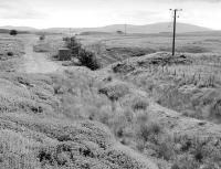 The former line from Auchinleck to Cairnhill Mine was proposed for re-opening to a new opencast development at Gasswater. View shows the former NCB line from the exchange sidings on the Muirkirk branch looking towards Cairnhill in July 1998.<br><br>[Bill Roberton&nbsp;16/07/1998]