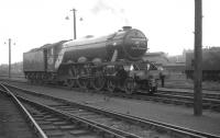 Gresley A3 Pacific no 4472 <I>Flying Scotsman</I> stands on Ferryhill shed on 16 May 1964, having arrived in Aberdeen earlier that day with the Queens College RTS <I>'Flying Scotsman Railtour'</I> from Edinburgh [see image 36107].<br><br>[K A Gray&nbsp;16/05/1964]