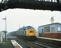 40160 about to pass through Kingsknowe with a freight on on a misty morning in May 1981 heading east.<br><br>[Peter Todd&nbsp;10/05/1981]