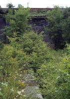 By the late 1970s, the remains of Maldon West station were well and truly overgrown and only accessible by a circuitous walk. The platforms and goods yard were separated by an under road tunnel, the bricked up northern portal and one of the platforms being visible here. The booking office was located above the portal at road level. The passenger service ended in 1939 and the last traffic passed through in 1959. The trackbed between Maldon West and Maldon East was finally claimed by the A414 town bypass and a roundabout now covers this site.<br><br>[Mark Dufton&nbsp;15/07/1978]