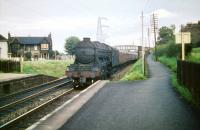 The down <I>'Flying Scotsman'</I> passing Joppa on 6 August 1959. A3 Pacific no 60060 <I>The Tetrarch</I>.<br><br>[A Snapper (Courtesy Bruce McCartney)&nbsp;06/08/1959]