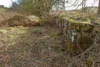 A little south of Gask Junction on the West of Fife Mineral Railway's Lethans No1 branch, and adjacent to the A823, are the remains of Lochend Siding, a loading bank served by a single track spur. View looking south on 11 March.<br><br>[Bill Roberton&nbsp;11/03/2012]