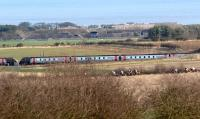 Northbound and southbound CrossCountry Voyagers about to pass on 11 March on the ECML at Longhoughton, Northumberland. In the foreground are runners in a point-to-point race taking place at nearby Ratcheugh Farm.<br><br>[John Steven&nbsp;11/03/2012]