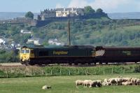 Overlooked by Stirling castle, Freightliner locomotive 66 555 motors past some very relaxed looking sheep near Cambuskenneth in May 2010. The load is coal destined for Longannet power station.<br><br>[Mark Dufton&nbsp;22/05/2010]