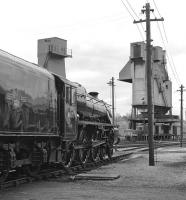Sparkling condition aside, this view of Black 5 No. 44871 at Carnforth Shed could almost have been taken during the BR steam era. In reality the year is 1977 and the loco has already spent the best part of nine years in preservation.<br><br>[Bill Jamieson&nbsp;08/05/1977]