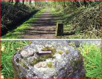 The top picture shows a trackside relic just south west of Castle Douglas - view looking west. Below is the top surface of one of a pair of them standing at the sides of a path within Threave Gardens, complete with metal numbers. Both photographs taken on 1 April 2012. [See image 41753 for explanation]<br><br>[Colin Miller&nbsp;01/04/2012]
