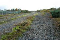 The lifted Ardeer ICI sidings at Stevenston in October 2008. The Ardrossan Railway is to the left, the Lanarkshire and Ayrshire Railway was to the right and the Misk or Ardeer branch ran off to the right behind the camera.<br><br>[Ewan Crawford /10/2008]