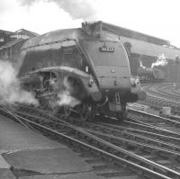 A4 Pacific no 60019 <I>'Bittern'</I> leaves Newcastle Central with a train in the 1960s bound for London Kings Cross.<br><br>[K A Gray&nbsp;//]