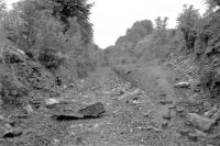 Opened by the GWR in 1910, Combe Hay Halt was situated about a mile east of Dunkerton [see image 38453], with a short tunnel just west of the station. The remains are seen here in 1962, more than 37 years after closure. Sadly, I don't think it featured in 'The Titfield Thunderbolt'. <br><br>[John Thorn&nbsp;//1962]