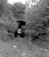 The short tunnel just west of the station at Combe Hay, photographed in 1962 [see image 38597].<br><br>[John Thorn&nbsp;//1962]