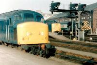 Scene at the south end of York station in the early 1980s with 'Peak' and 'Deltic' locomotives standing at the platforms.<br><br>[Colin Alexander&nbsp;/04/1981]