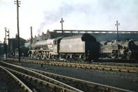 A Saturday afternoon view of Polmadie shed in late September 1959. Home-based Stanier Pacific no 46201 <I>Princess Elizabeth</I> stands centre stage. <br><br>[A Snapper (Courtesy Bruce McCartney)&nbsp;26/08/1959]