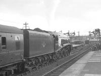 A4 no 60019 <I>Bittern</I> takes a bow for the photographers at Aberdeen on 3 September 1966, the occasion of the last scheduled A4 operated service to Glasgow. <br><br>[K A Gray&nbsp;03/09/1966]