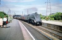 60012 <I>Commonwealth of Australia</I> takes a southbound express through Joppa in the summer of 1959.<br><br>[A Snapper (Courtesy Bruce McCartney)&nbsp;11/07/1959]