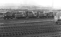 The morning of Sunday 5th September 1976 finds a row of apparently dumped class 03 shunters at the east end of Healey Mills Yard. In fact No. 03 097 in the middle was the only one of this trio not to see further service - 03 047 on the left was only in store and would not be withdrawn until the middle of 1979, while 03 111 on the right was reinstated a couple of months later at Gateshead TMD and soldiered on into 1980.<br><br>[Bill Jamieson&nbsp;05/09/1976]