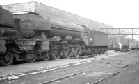 A3 Pacific 60080 <I>'Dick Turpin'</I> is amongst the locomotives stabled in the shrd yard at Gateshead on 11 April 1964.<br><br>[K A Gray&nbsp;11/04/1964]