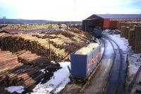 Bespoke containers laden with woodchip wait to be hauled to the Baltic coast from this sawmill west of Borlange on the Malung branch line in Sweden. The containers are no less than 10'3� high (compared to a 9'6� limit in Britain), maximising the payload of material to be delivered to a rail-connected paper mill some 100 miles distant at Gavle. This view was taken in 1998 during a business visit to assess load-carrying methods for movement of woodchip from a proposed railhead on the Maxwelltown branch to the Shotton paper mill in north east Wales - a scheme which was abandoned when Shotton Paper switched from use of virgin fibre to 100% recycled material.<br><br>[David Spaven&nbsp;//1998]