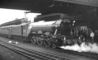 4472 <I>Flying Scotsman</I> stands at York station on 2 May 1964 with the Gresley Society's 9 coach 'London North Eastern Flyer' which ran between Kings Cross and Darlington North Road. The trip included a visit to Darlington Locomotive Works.<br><br>[K A Gray&nbsp;02/05/1964]