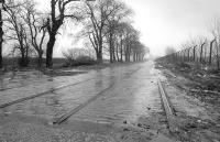 An abandoned section of old Renfrew Road, complete with tram rails, photographed looking east in February 1990. The road and tramway were rerouted further south during construction of the King George V Dock.<br><br>[Bill Roberton&nbsp;24/02/1970]