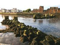 Evening sunlight catches the piers of the dismantled viaduct on the branch to Ayr South Harbour on 20 July. Some fragments of railway remain on the quayside.<br><br>[Bill Roberton&nbsp;20/07/2012]