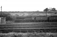 D11 4-4-0 no 62689 <I>Maid of Lorn</I> standing in the stored locomotive sidings alongside Polmont shed, thought to have been photographed in 1961. The locomotive was officially withdrawn from Eastfield in July of that year and cut up the following month in Heatheryknowe sidings, Coatbridge.<br><br>[K A Gray&nbsp;//1961]