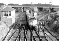 A type 2 passes Dalmeny Junction signal box with a northbound freight heading for the Forth Bridge in 1971. The branch from South Queensferry came in behind the box and the line round to Winchburgh Junction is on the right.<br><br>[John Furnevel&nbsp;11/11/1971]