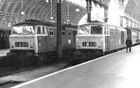 Hymeks 7031 (left) and 7002 stand at the buffer stops at Paddington station in May 1969.<br><br>[John Furnevel&nbsp;05/05/1969]