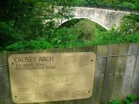 The Causey Arch on the Tanfield Railway in August 2012.<br><br>[John Yellowlees 19/08/2012]