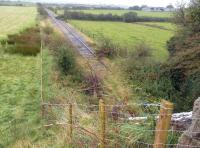 The overgrown trackbed of the former Amlwch branch north west of Llangwyllog in September 2012. View south east back towards Holland Arms. The branch was closed completely in 1993.<br><br>[Bruce McCartney&nbsp;25/09/2012]