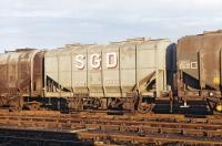 Private owner grain hopper No. 48 belonging to Scottish Grain Distillers of Windygates, Fife, photographed in Millerhill yard on 22nd November 1970 <br><br>[Bill Jamieson&nbsp;22/11/1970]